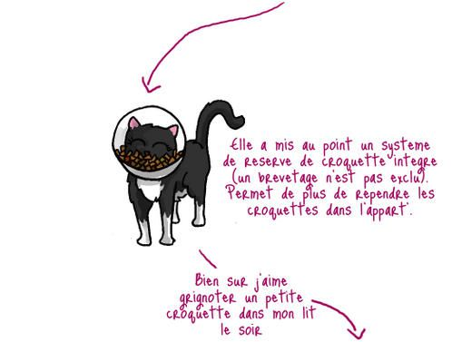 Blog Liliaimelenougat.fr Chat-colerette-2-copie-1